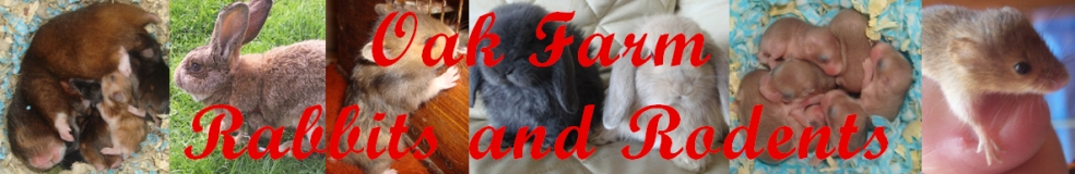 Oak Farm Rabbits & Rodents